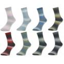 H&W Comfort Sockenwolle 1218, 100g, Sockenwolle